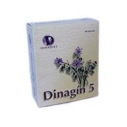 DINAGÍN 5